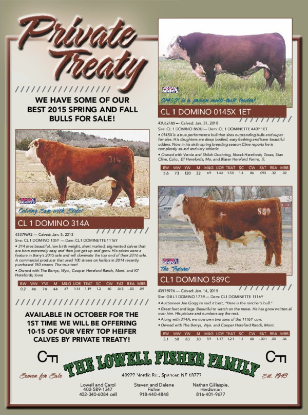 AVAILABLE IN OCTOBER FOR THE 1ST TIME WE WILL BE OFFERING 10-15 OF OUR VERY TOP HEIFER CALVES BY PRIVATE TREATY!
